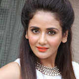 Parul Yadav Photos at South Scope Calendar 2014 Launch Photos 2528107%2529