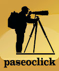 PaseoClick Fotográfico