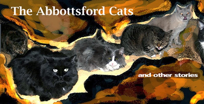 The Abbottsford Cats