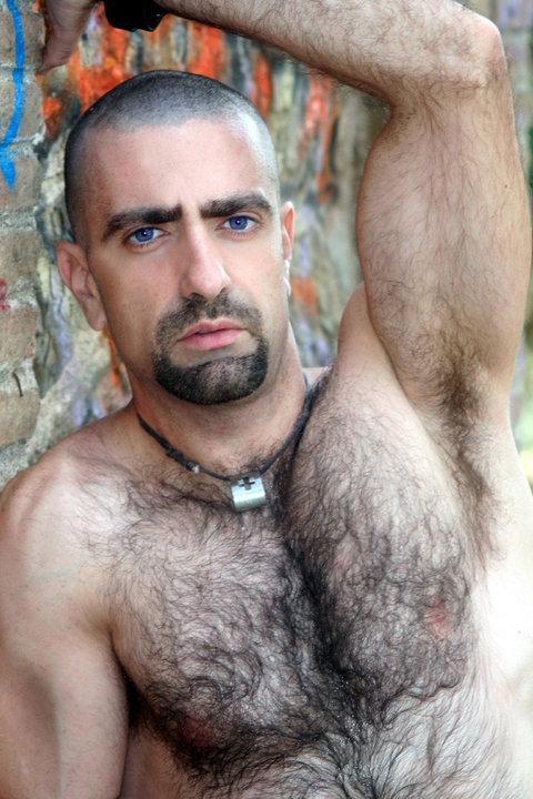 Волосатые геи