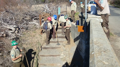 CCC clearing the easement for Cache Creek at Rumsey Bridge