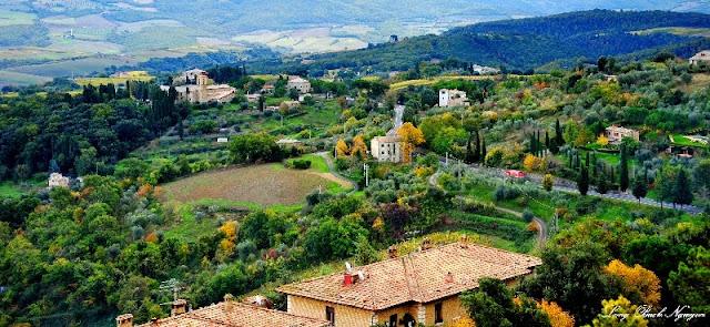 Road to Montalcino, Tuscany, Italy.