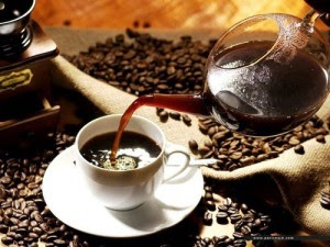 kopi luwak kopi termahal di dunia