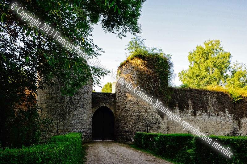Chateau de Mez le maréchal à Dordives