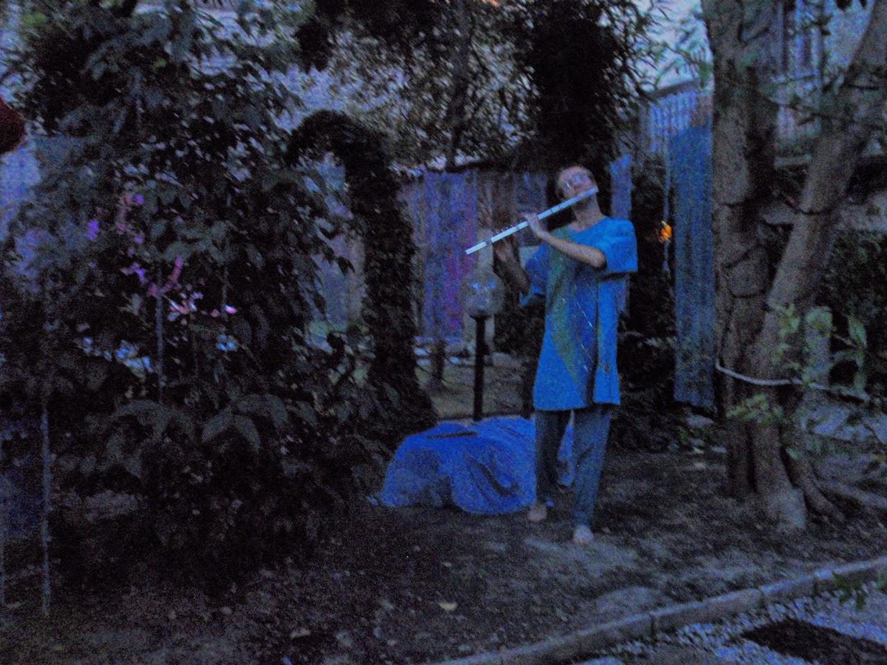 Il fantastico mondo di daniela le mie bolle al giardino - Il giardino di mezzanotte ...