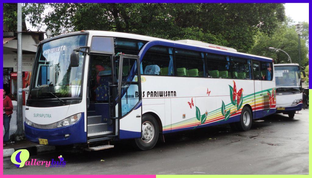 PO Suryaputra (SPA)- New Setra by Adi Putro | Hino Bus