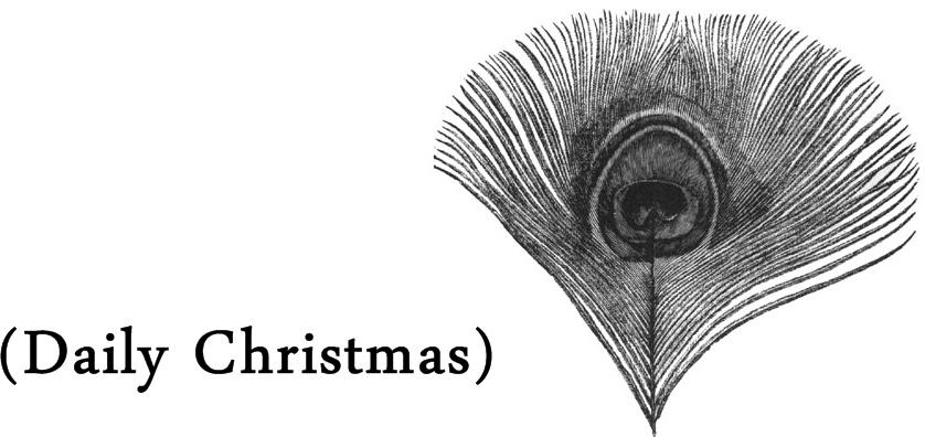 Daily Christmas