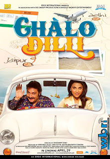 Vinay pathak and Lara Dutta in Chalo Dilli