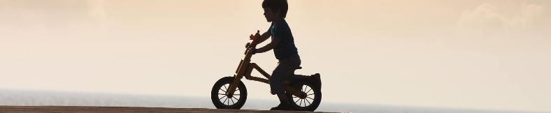 Modifikasi Sepeda Keren