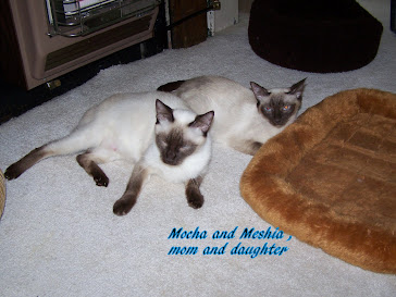 Meshia and her mom Mocha