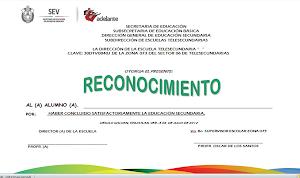FORMATO DE RECONOCIMIENTO 2013