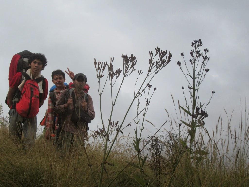Dari Cikasur menuju puncak Argopuro