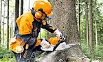 Manual do motoserrista  Stihl