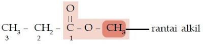 metil propionat