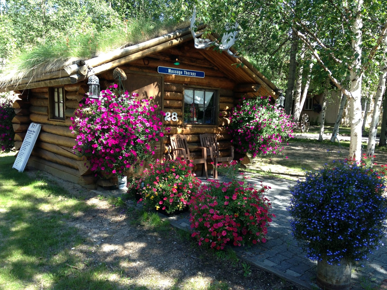 My vagabond year denali national park chena hot springs ice museum this is one of the out buildings at the hot springs the sign says massage therapy arent those flower baskets the biggest and most beautiful youve ever mightylinksfo