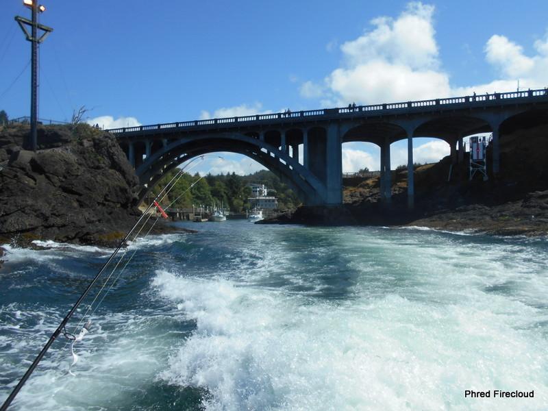 The firecloud report siletz river oregon for Siletz river fishing report