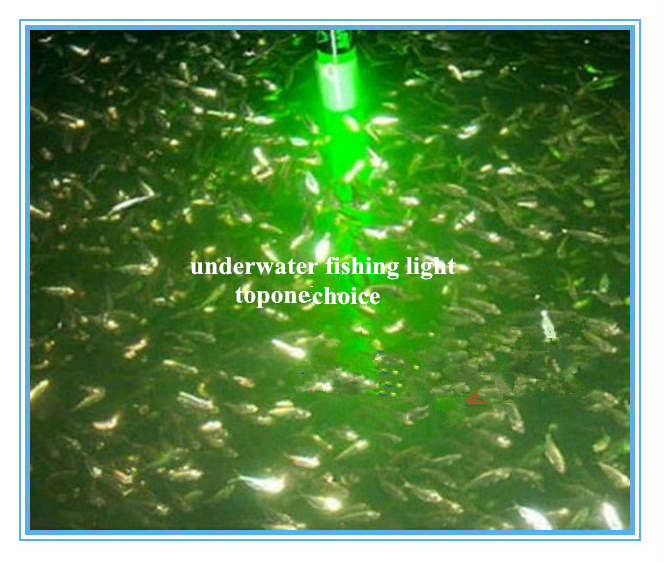 toponechoice: toponechoice led underwater fishing light, Reel Combo