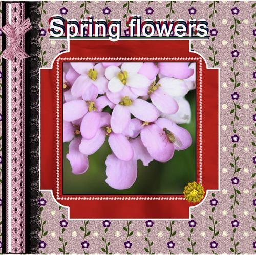- Spring flowers
