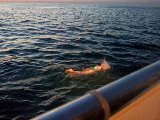 Open water swimmer Katie Benoit 4 hours into her successful English Channel swim