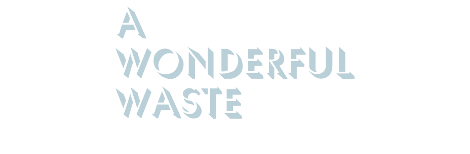 a wonderful waste