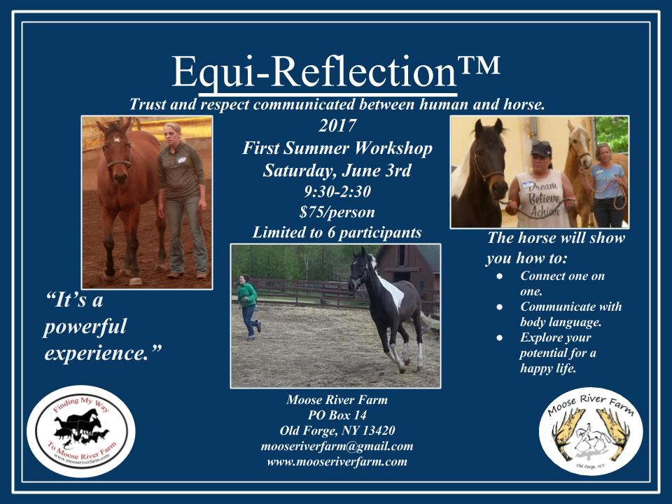 Equi-Reflection Workshop