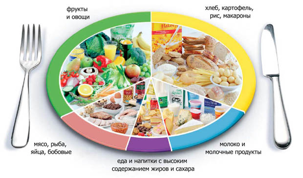 здоровое питание легко
