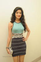 Richa Panai stunning Short Skirt tight sky blue Tank top at Mahesh Movie Launch