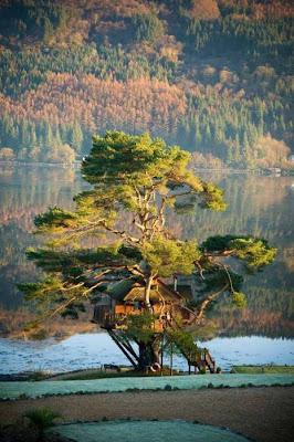 Las imágenes más hermosas del mundo 2011