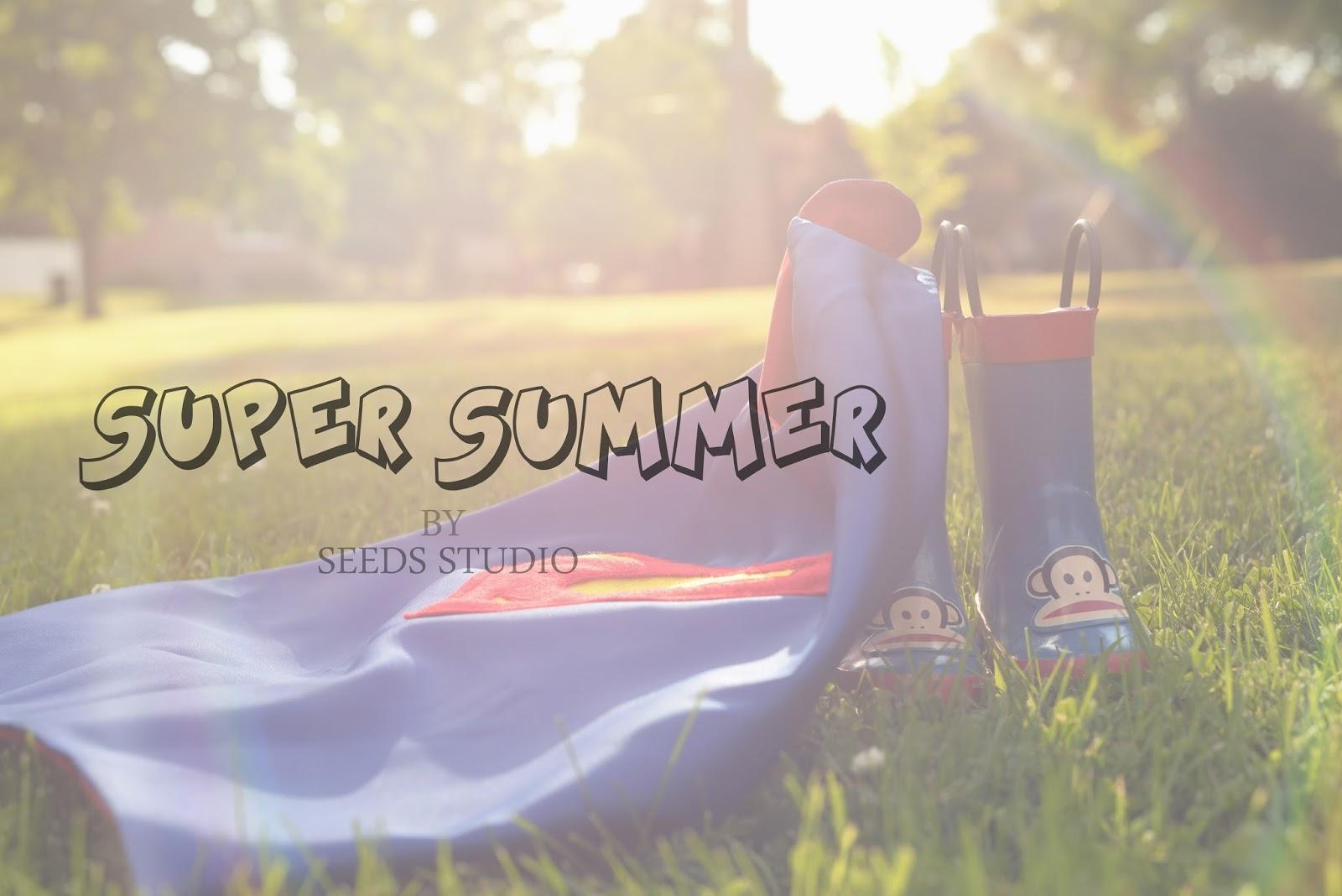 Super summer 2014 seeds studio for Super studio