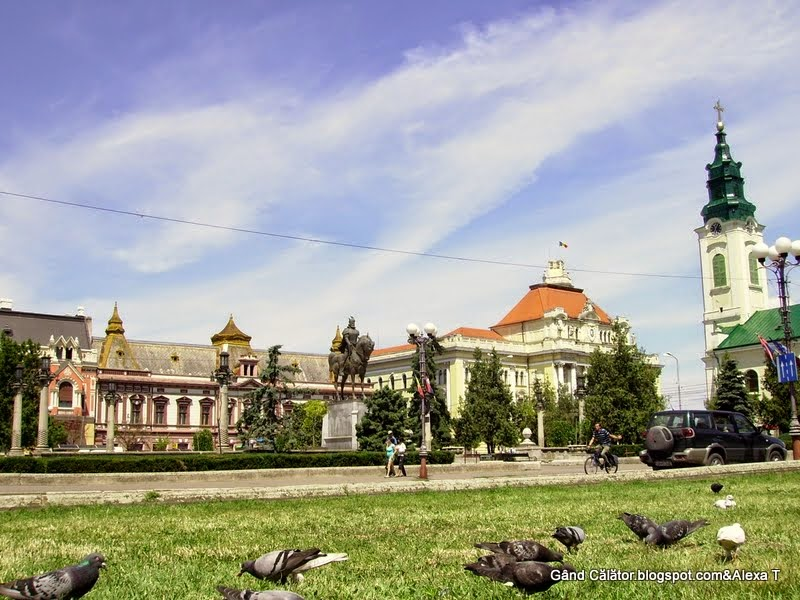 Pigeons in the Unirii Square at Oradea. Bihor County.