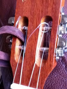 ukulele headstock and strings