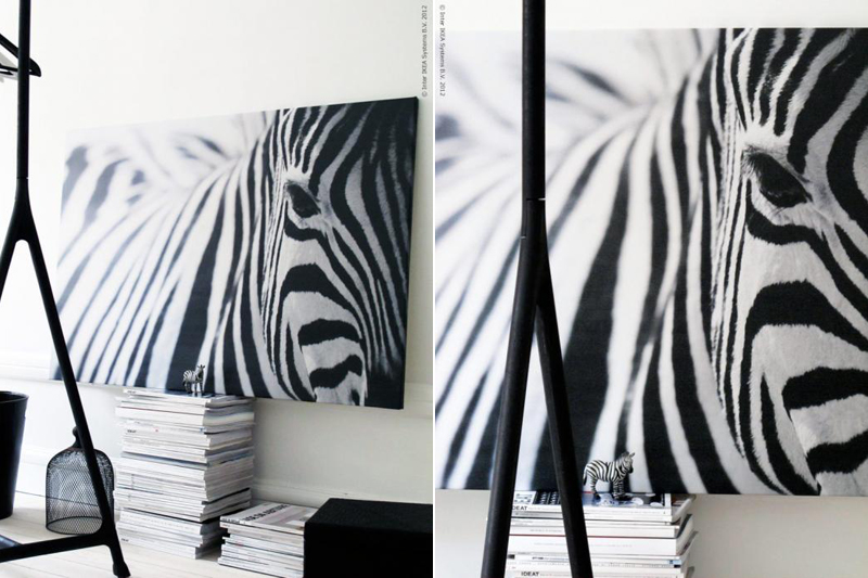 ikea kitchens zebra print new interior design. Black Bedroom Furniture Sets. Home Design Ideas