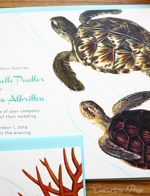 Florida Aquarium Wedding Invitations with Sea Turtles by Concertina Press