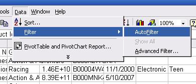 Excel Auto Filter