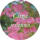 http://brzezinamoja.blogspot.com/2015/11/cisza-jesienna.html