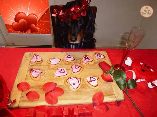 Molly The Wally says, make a start and show some art on my heart shaped cookies.13