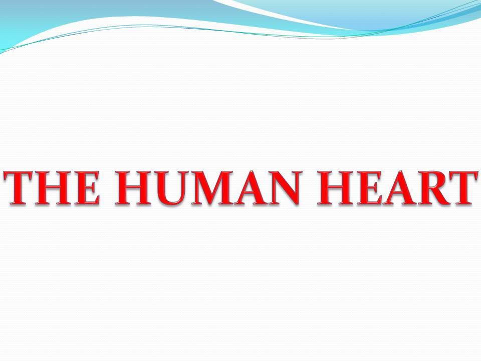 Natural science human heart ppt human heart ppt ccuart Choice Image