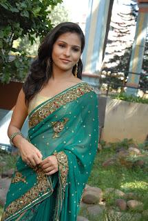 Zareen Khan Saree Pictures 07.jpg