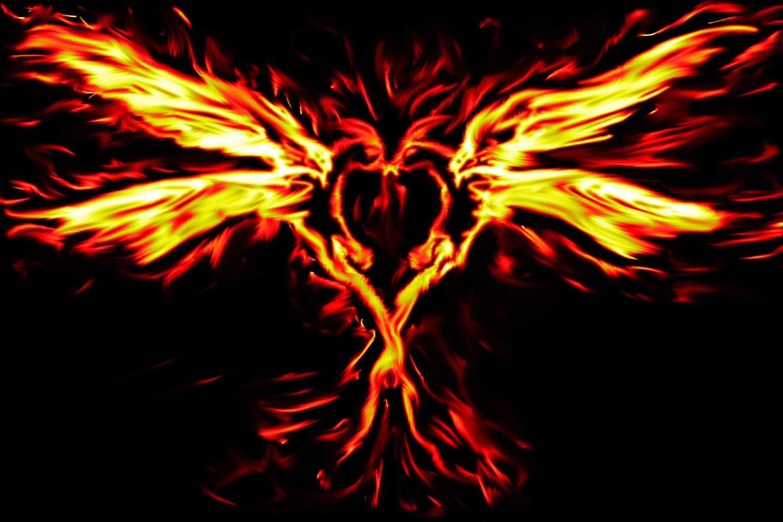 Jig-Obito Phoenix_love_by_punkisstillcool