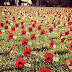 Lest We Forget - ANZAC Day 2013