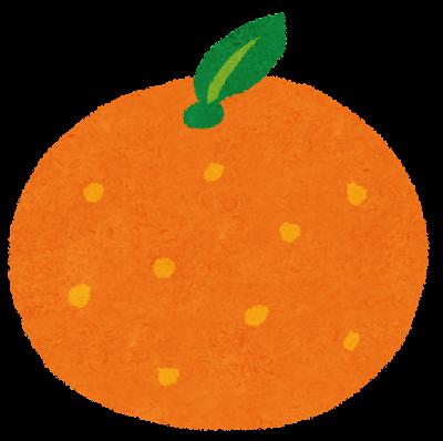 フルーツのイラスト「みかん・オレンジ」