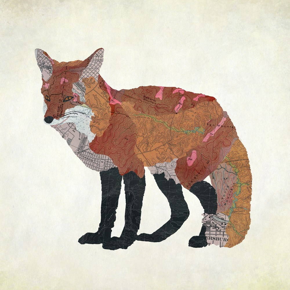 05-Virginia-Red-Fox-Jason-LaFerrera-Cartography-Shaped-to-make-Map-Animals-www-designstack-co