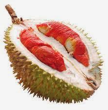 GAMBAR ANEKA DUREN UNIK Foto Durian Wallpaper Terbaru