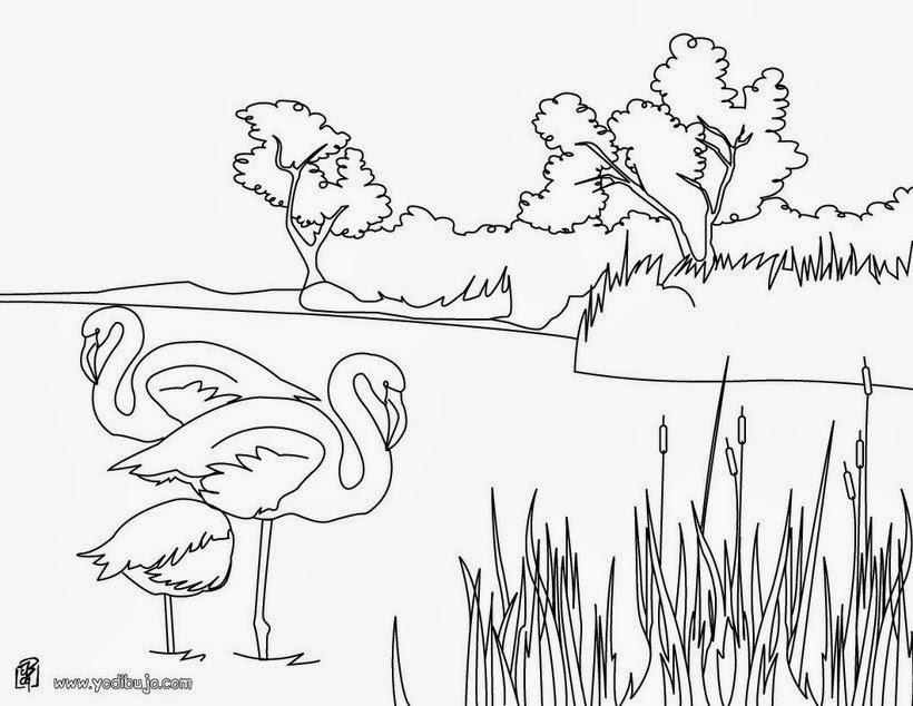 Jardin Escolar: Paisajes - Dibujos para colorear