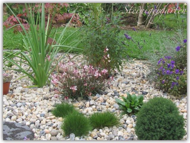 Steingarten Im Topf Anlegen : Steiniger Garten  Projekt Kiesbeet