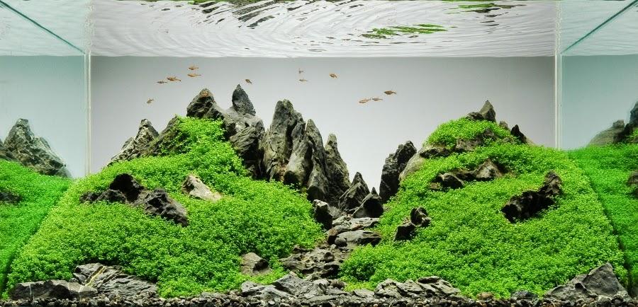 Peter_Kirwan_Mountainscape