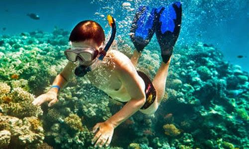 Tips Snorkeling Bagi Pemula
