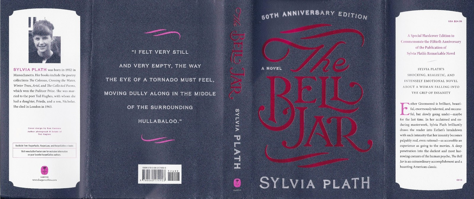 The bell jar essay
