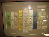 MI State Fair livestock ribbons from 1911