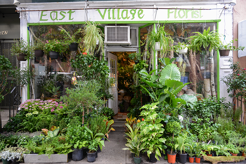 the petticoat photo diary new york east village florist